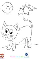Chat noir et chauve-souris