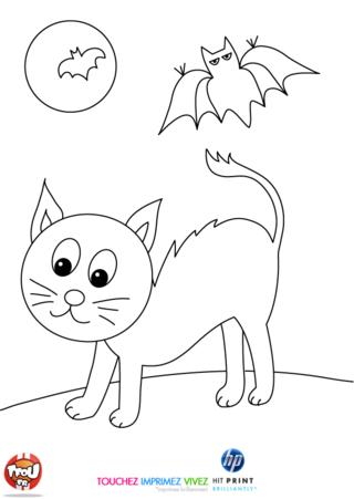 Coloriage: Chat noir et chauve-souris