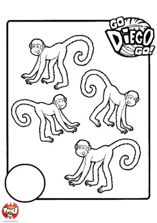 Coloriage: Les singes
