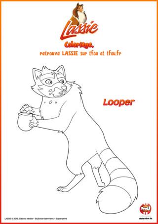 """Hahaha ! Ce coloriage de Looper est trop drôle ! Imprime-le gratuitement sur TFou.fr pour le rendre encore plus coooool. Looper est en train de manger la confiture qu'il a chipée. Mais attention, il surveille quand même ses arrières... faut dire qu'il a de l'expérience dans ce domaine Looper. Depuis qu'il sait marcher, Looper passe son temps à chiper dans les épiceries, sur les tables de pique-nique de randonneurs, dans les poubelles des restaurants, dans les décharges même : """" Ah ben, quand faut manger, faut manger ! """". Si tu aimes ce coloriage pour enfants de Looper, va sur le site TFou.fr tu pourras trouver plein d'autres coloriages de ta série Lassie."""