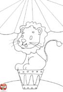 Lion au cirque