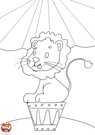 Coloriage: Lion au cirque