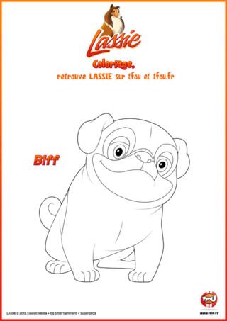 Wouf ! wouf ! Ce coloriage pour enfants à imprimer gratuitement à du chien ! C'est normal il s'agit de Biff, le chef de la bande de la grange. Biff est le chef car c'est le plus imposant et le plus costaud... et aussi le plus maladroit ! Hé oui ! Biff est vigoureux et sa force peut être d'une grande aide mais certaines fois il ne la contrôle pas et cela peut se retourner contre lui. Toi aussi tu débordes d'énergie comme Biff ? Va vite sur TFou.fr, imprime gratuitement ce coloriage de Lassie et ajoute-y de jolies couleurs ! Défoule-toi !