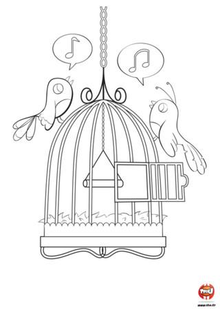 Découvre un super coloriage gratuit pour enfant spécial oiseau sur Tfou.fr. Sur ce coloriage, amuses-toi à mettre des couleurs sur Titi et Lili, les deux petites chanteuses. Elles adorent la musique et préparent leur prochain concert de printemps. Jazz, rock, classique...elles peuvent tout chanter ! Ensemble, elles redonnent de la joie aux passants en chantonnant de belles mélodies. Si tu les affiches dans ta chambre, peut-être te chanteront-elles une chanson ? Retrouve d'autres coloriages sur Tfou.fr !