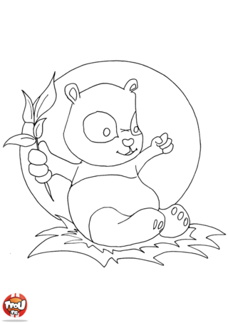 Coloriage: Bébé panda