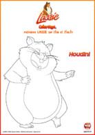 LASSIE_Coloriage_Houdini rigole