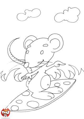 Coloriage: Rat qui surfe