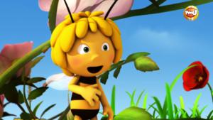 Les conseils de Maya L'abeille