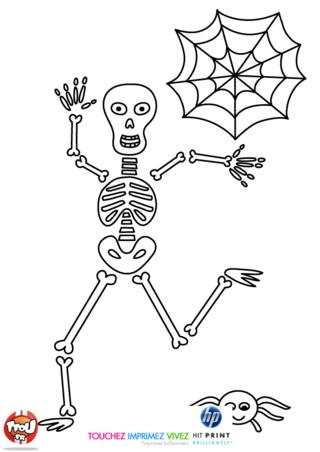 Coloriage: Le squelette et l'araignée