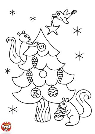 Coloriage : viens vite imprimer ton coloriage de Noël. Tu n'as pas encore décoré ton sapin ? Sur TFou.fr, tu pourras t'amuser à colorier ton sapin de Noël et à mettre plein de couleur pour le décorer. Colorie les guirlandes et les boules de Noël de ton sapin. Si tu aimes les coloriages, tu pourras en imprimer plein d'autres sur TFou.fr. Amuse-toi à les colorier tout en créativité pour Noël. Imprime plein de coloriage et reçoit des points TFou. Offre tes coloriages à tes amis. Invite-les à faire plein de coloriage avec toi. Passe de bonnes fêtes avec TFou.fr !