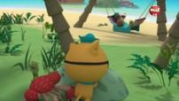 Les Octonauts & le voleur de noix de coco - Octonauts