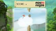 Jeux Mini Ninjas Obstacles