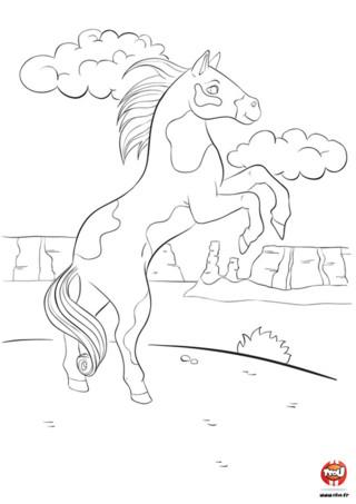 Tfou.fr te propose ce super coloriage de cheval gratuit à imprimer. Dans ce coloriage pour enfant, Thibaud le cheval sauvage se balade dans le canyon. Regarde comme il est beau quand sa crinière vole librement au vent. Il a de belles grandes taches sur sa robe et au coin de l'oeil. Cette belle journée lui donne envie de ruer gaiement et partir pour de folles aventures dans les contrées sauvages. Que va-t-il faire aujourd'hui ? Prends tes crayons, apporte des couleurs à Thibaud et invente lui pleins d'aventures à vivre !