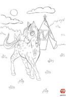 Tiki-Tiki le cheval indien