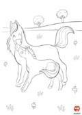 Maman cheval et petit poney