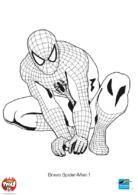 Bravo Spiderman !