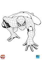 Spiderman rampe