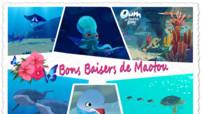 Oum le dauphin - CarteEnvironnement