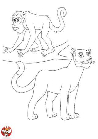 Coloriage: Singe et lionne