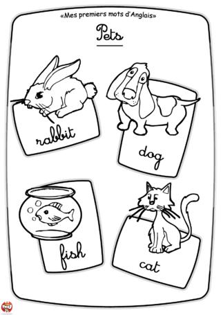 Coloriage: Les animaux domestiques