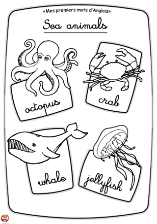 Coloriage: Les animaux marins
