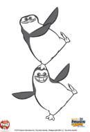 pingouin14
