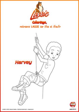 TFou.fr te propose ce super coloriage gratuit à imprimer pour enfant spécial Lassie. C'est un coloriage d'Harvey, ce petit garçon qui est le meilleur ami de Zoé et la chienne Lassie. Ensemble, ils vivent de nombreuses aventures. Dans ce coloriage, Harvey s'amuse en faisant de l'escalade dans le parc naturel du Grand Mont. Pour pouvoir grimper au sommet, il a besoin de ton aide. Il te suffit d'imprimer le coloriage de Harvey et d'y mettre tes plus belles couleurs. Ensuite, accroche-le dans ta chambre pour pouvoir garder un beau souvenir d'Harvey !