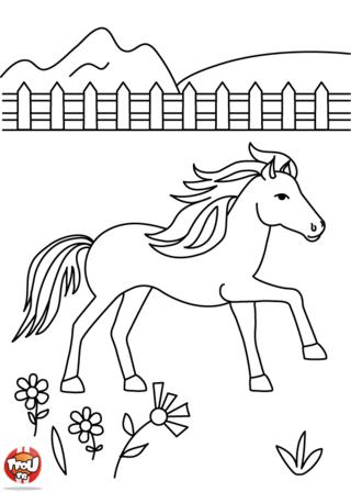 Coloriage: cheval dans la prairie