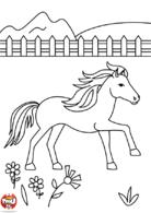 cheval dans la prairie