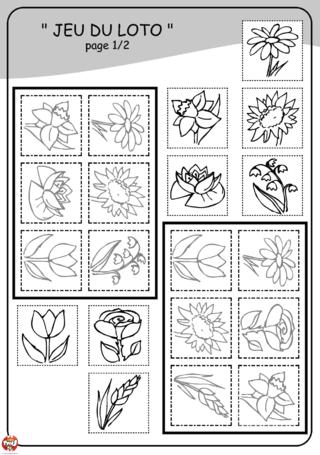 Coloriage: Loto fleurs