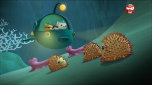 Les octonauts et les frères Bob - Octonauts