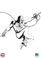 Spiderman s'élance
