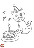L'anniversaire du chat