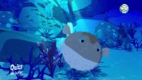 poisson globe