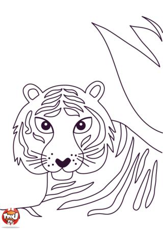 Coloriage: Portrait de tigre