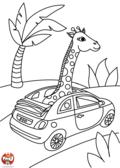 Une girafe en voiture