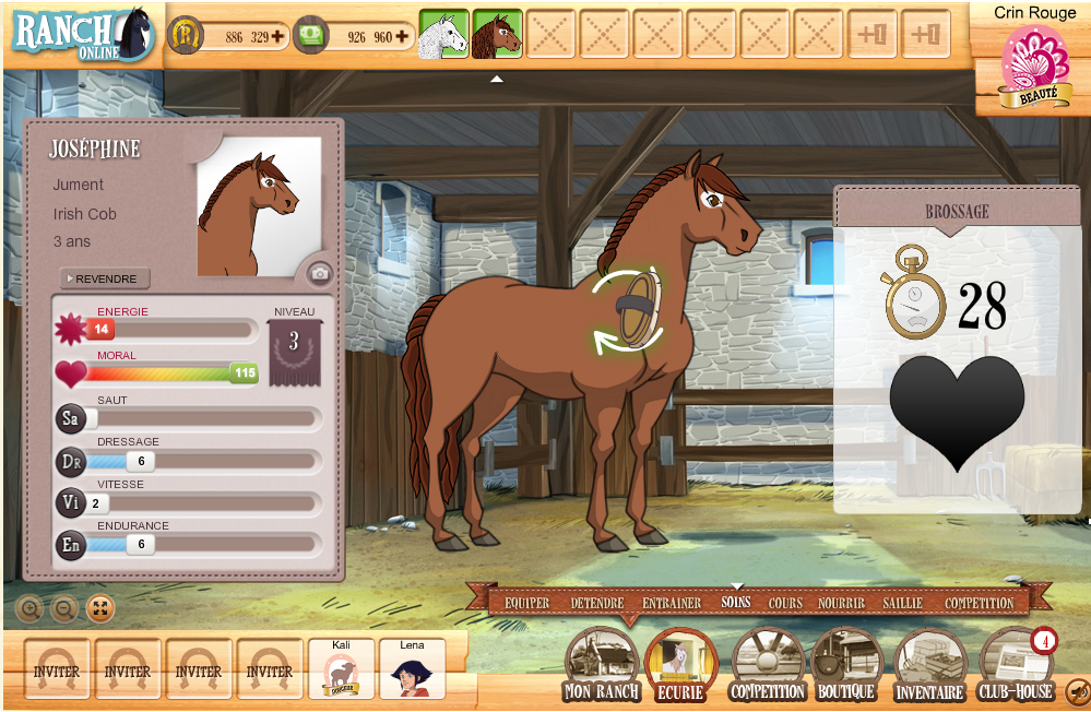 Le_Ranch_online_Brosser son cheval