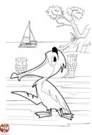 Pélican au bord de la mer