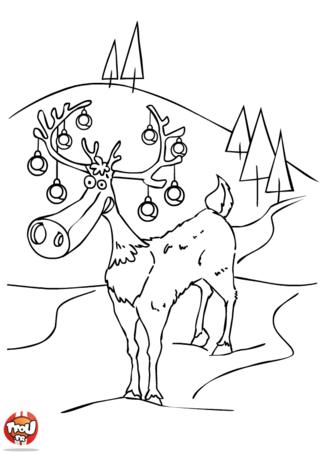 Coloriage : Le renne du Père Noël