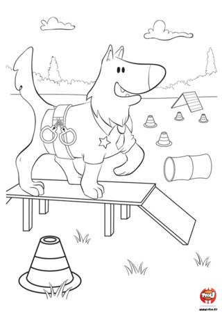 Rex est un berger allemand et il est policier. Il doit donc beaucoup s'entrainer pour être en forme. Regarde comme il a fière allure sur son parcours de motricité. Il est très appliqué à faire les exercices. Il faut bien cela pour être un héros ! Prends tes plus beaux crayons de couleurs et colorie ce coloriage de chien sur TFou.fr. Laisse parler ta créativité grâce aux nombreux coloriages gratuits sur TFou.fr. Tu trouveras plein de coloriage de chien à imprimer.