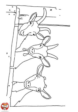 Coloriage: Chèvres à l'étable