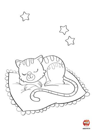 Tu aimes les chats ? Tu trouves toi aussi que ce sont d'adorables félins tout doux et tout mignons ? Alors vite ! Imprime ce coloriage gratuit pour enfant sur TFou.fr et amuse-toi à mettre plusieurs couleurs sur ce chat. Comme on dit, la nuit, tous les chats sont gris. Mais celui-ci peut être de la couleur que tu veux. Il a de belles rayures et se repose sur un coussin tout moelleux. La nuit est étoilée, fais de beaux rêves petit chat !