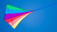 Coloriage Cerf Volant