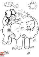 L'éléphant arroseur