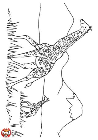 Coloriage: Girafe dans la savane