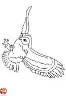 Hibou en plein vol