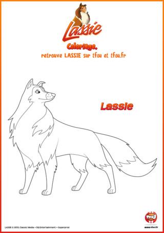 Découvre ce super coloriage de Lassie, la fidèle chienne de Zoé sur TFou.fr. Lassie est un chien-sauveteur, qui est toujours prête à venir en aide à ceux qui en ont besoin. Accompagnée de sa maîtresse et amie Zoé, mais aussi d'Harvey leur meilleur ami, elle part en mission dès que cela est nécessaire. Si toi aussi tu aimes les chiens et que tu aimes aider les autres, ce coloriage est fait pour toi. Imprime-le gratuitement sur TFou.fr et amuses-toi à mettre des couleurs sur la chienne Lassie.