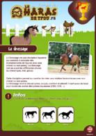 Fiche equitation dressage