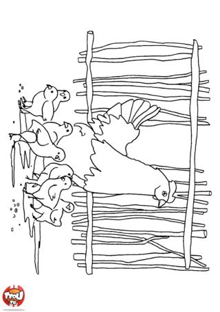 Coloriage: Dans la bassecour