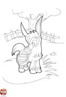 L'âne dans le pré